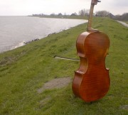 Ernst Reijseger - Cello - The Netherlands